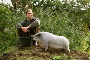 Minischwein Pauline mit Gregor auf Tuchfühlung