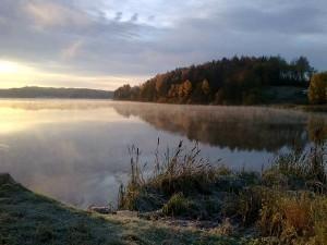 Walking Meditation: Inspirasjonsvandring til Mikaeli @ BALDRON i skogen | Akershus | Norge