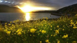 Mindfulness, magi og midnattssol - en reise til Finnmark @ Kjølnes fyr, Tana etc. | Finnmark | Norge