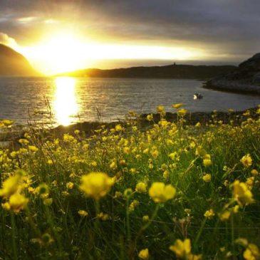 Mindfulness, magi og midnattssol – en reise til Finnmark
