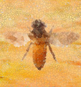 Misteltein, bia og mennesket @ Anthroposophical Society in Norway